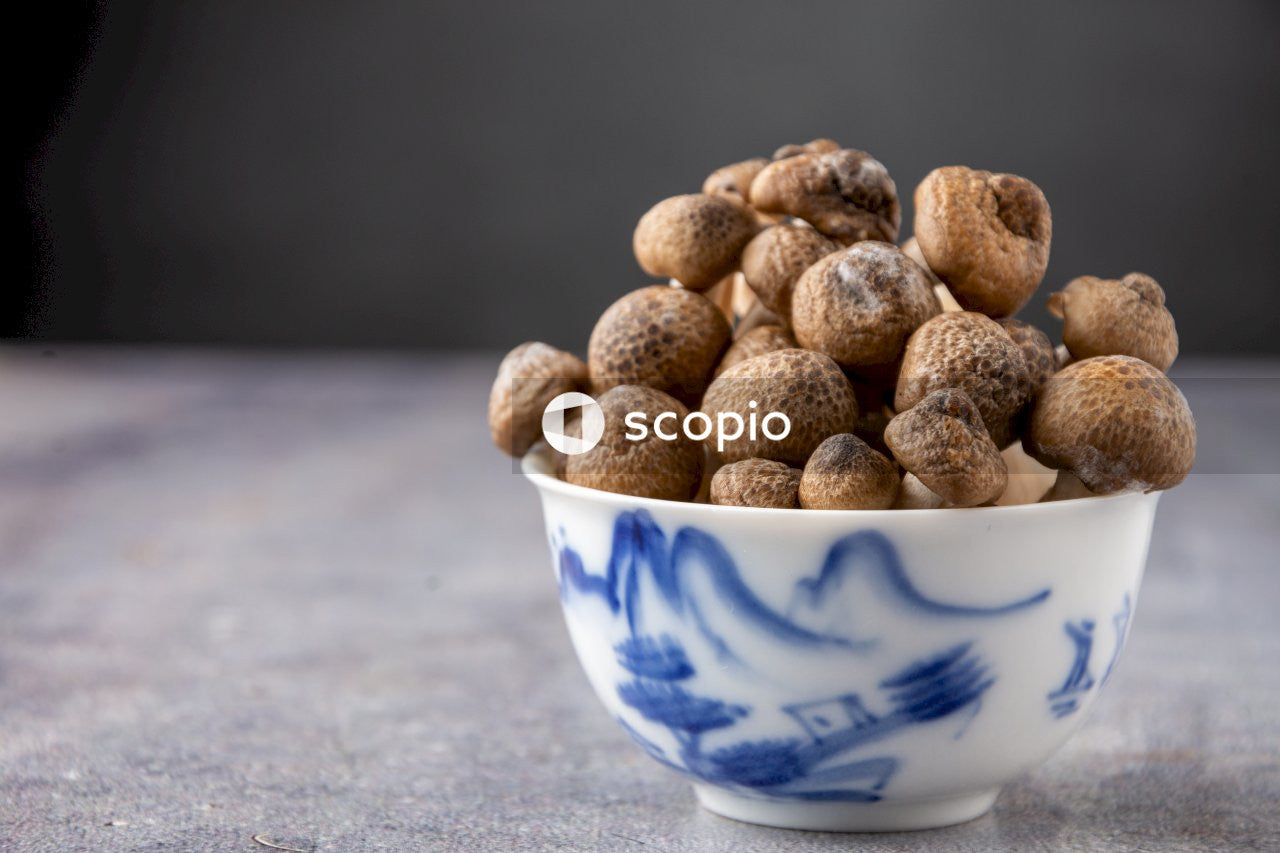 Brown nuts in white and blue ceramic bowl