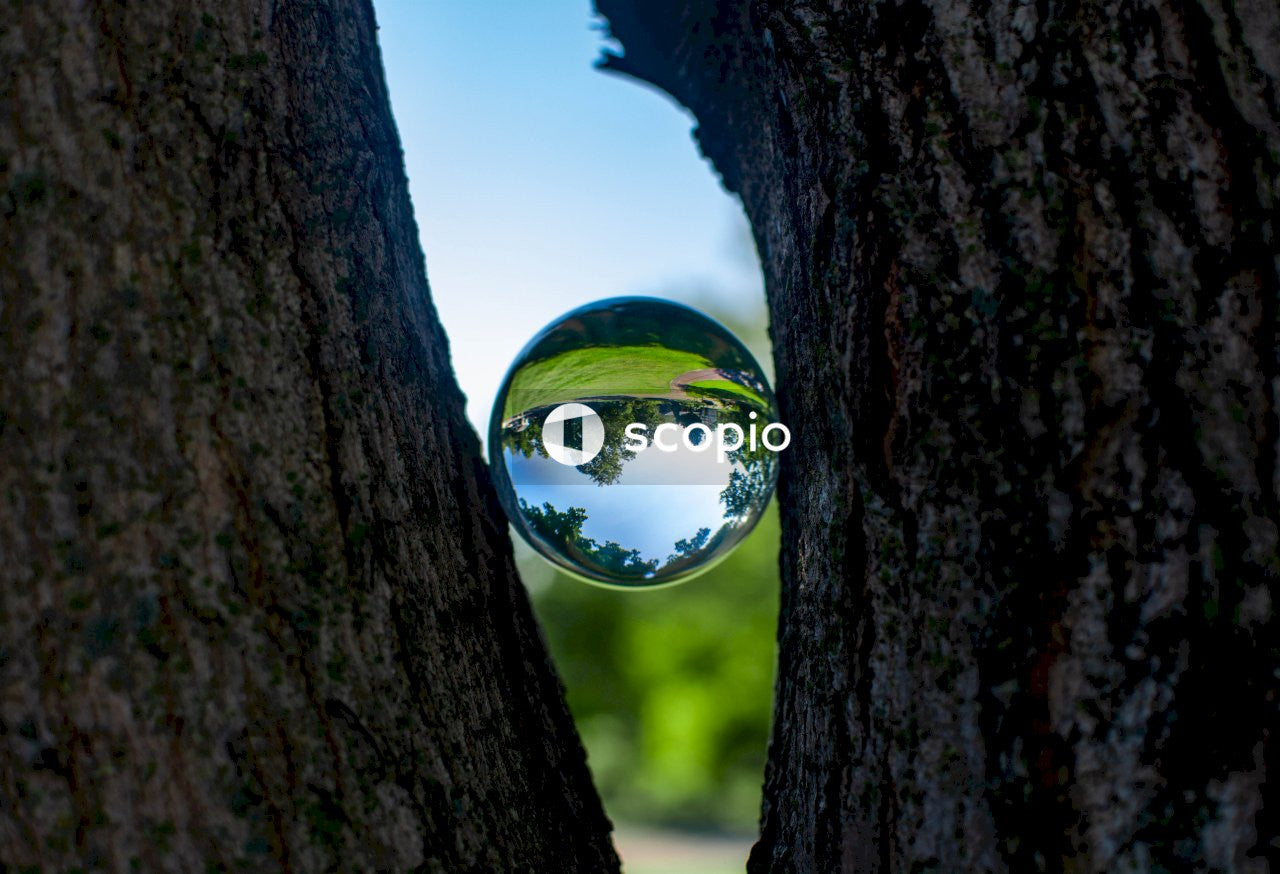Clear glass ball on brown tree trunk