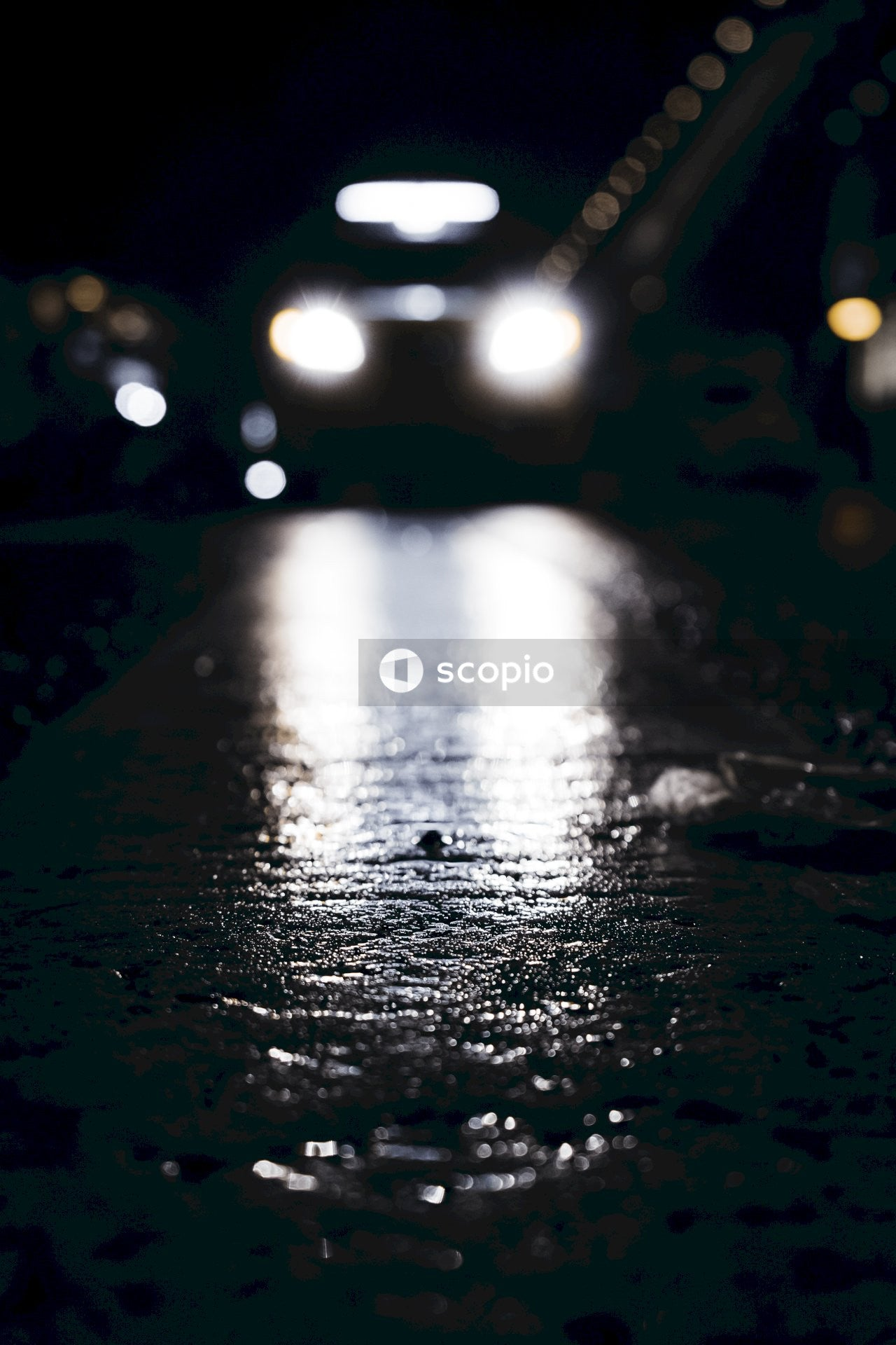 Bokeh photography of wet road