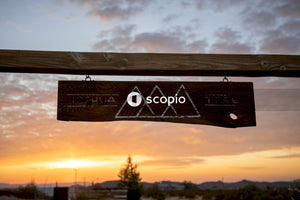 Brown wooden signage during sunset