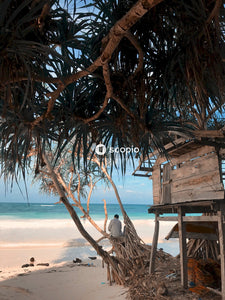 Brown wooden hut at a beach