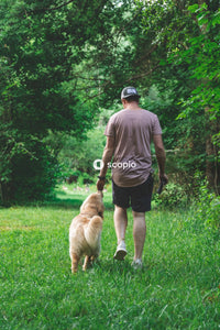 Man and dog walking on grass field
