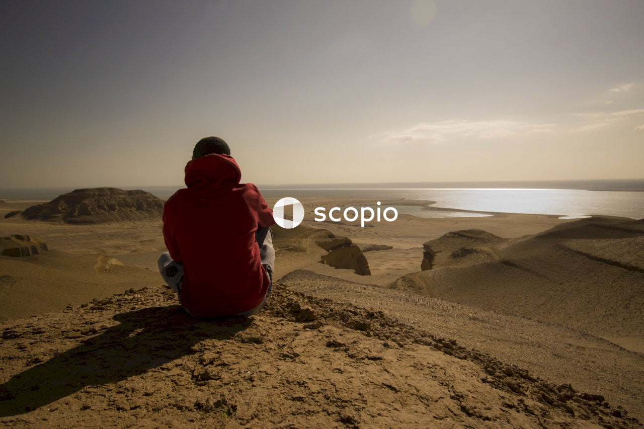 Person in red hoodie sitting on brown rock near sea