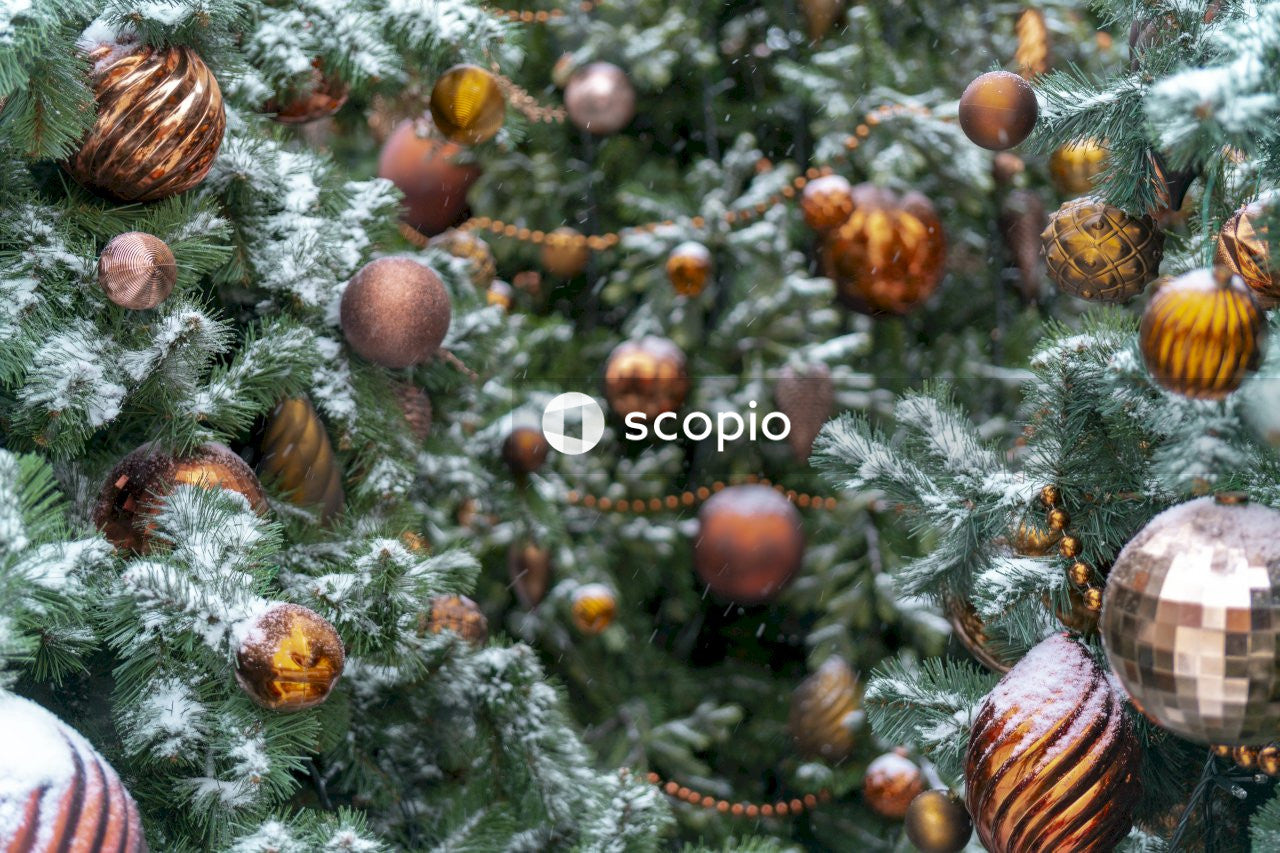Christmas tree in close-up