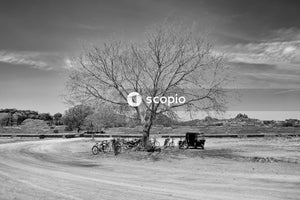 Grayscale photo of a bicycle on a snow covered field