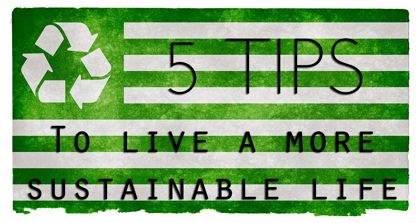 5 Tips to Live a More Sustainable Life