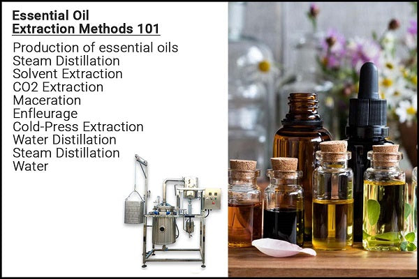 Essential Oil Extraction Methods 101
