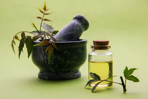 Neem Carrier Oil and its uses