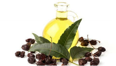 Uses of Neem Oil