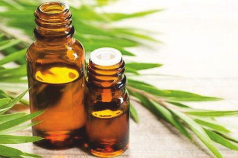 Vetiver Essential Oil for Anxiety