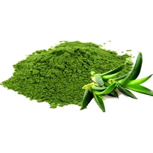 Aloe Vera Concentrated Powder