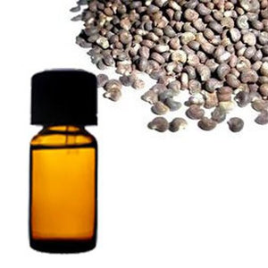 Ambrette Seed Oil - VedaOils.com