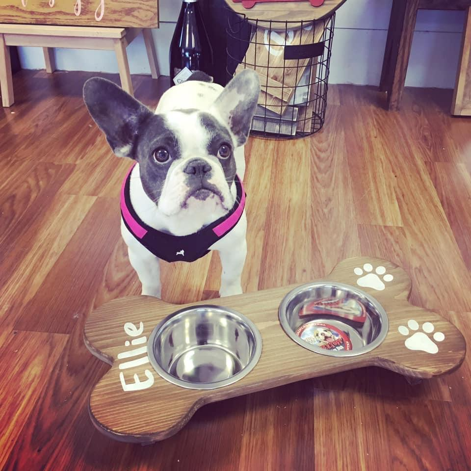 Doggie Dining Stations OR Leash Holders