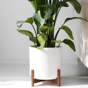 "Large Mid Century Modern Planter, Plant Pot with Shorty Wood Stand (12"" Ceramic Pot)"