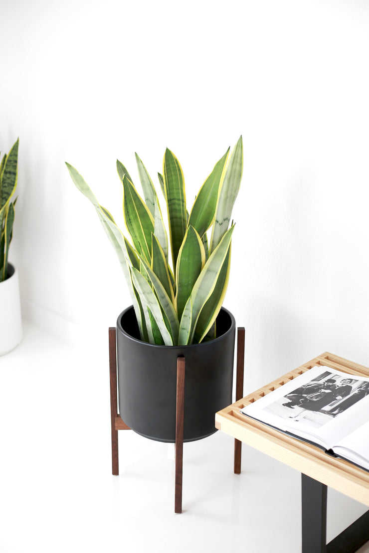 The Potted Earth Co. Matte Black Mid-century Modern Planter and Walnut Plant Stand