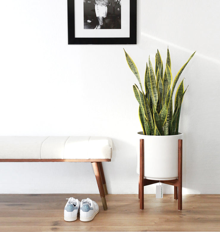 Large Mid Century Modern Planter with Wood Plant Stand - 12""