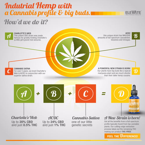 VA formerly ele-VA-te Full Spectrum Hemp Oil
