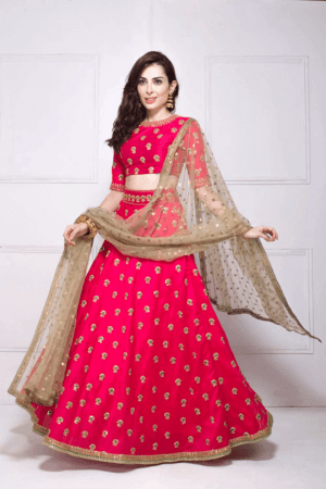 Banarasi Simple Lehenga