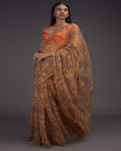orange Organza speacial work border saree