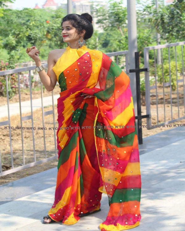 Multicolor Handwork Mirror Saree