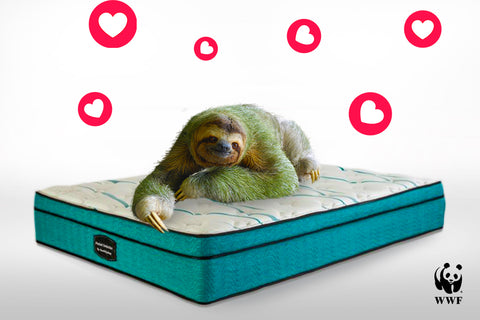 Pocket Seduction Mattress - Save A Sloth