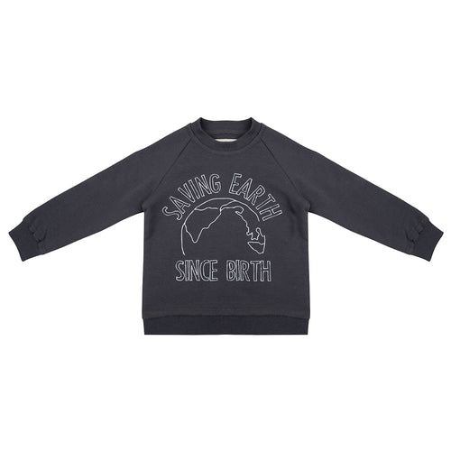 Sweater Saving Earth - Iron