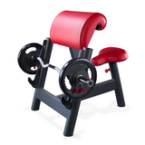 Seated Curl Bench Sec
