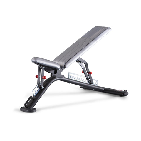 Fully Adjustable Bench Fit Evo