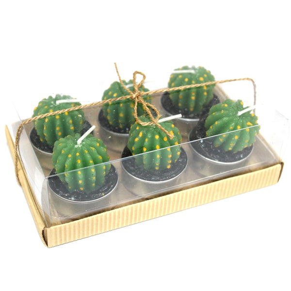 Set of 6 Barrel Cactus Tealights in Gift Box