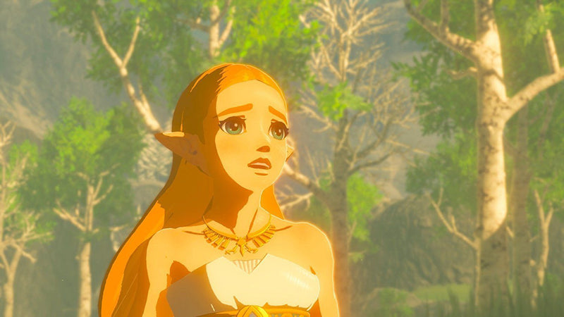 The Legend of Zelda: Breath of the Wild - Spend Bitcoin