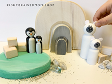 Igloo/Penguins and Polar Bears