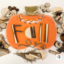 Big Pumpkin with 40 natural loose parts