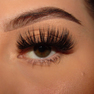'Make Them Stare' Luxury Eyelashes