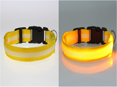 Premium Glow-In-The-Dark LED Pet Safety Collar