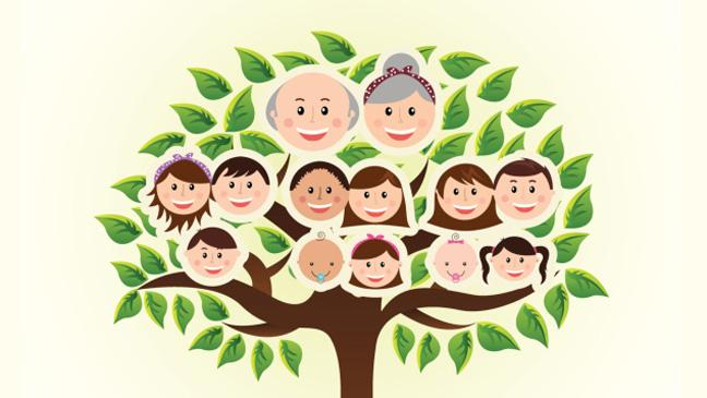 Trace your family story with a family tree.