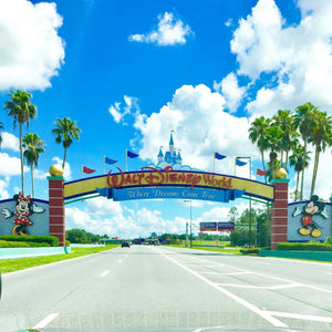 Disney World 2019: Why 2019 is the Best Time to Visit Disney World