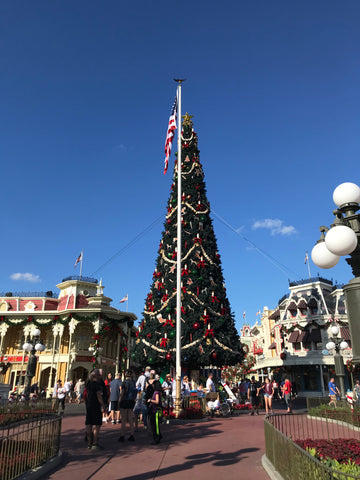 the decorations are just insane you truly get into the christmas spirit being in the park so what makes this party - Mickeys Very Merry Christmas Party Reviews