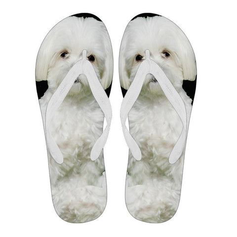 Maltese Flip Flops For Men-Free Shipping Limited Edition