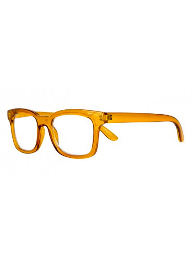 READING GLASSES - GLORIA