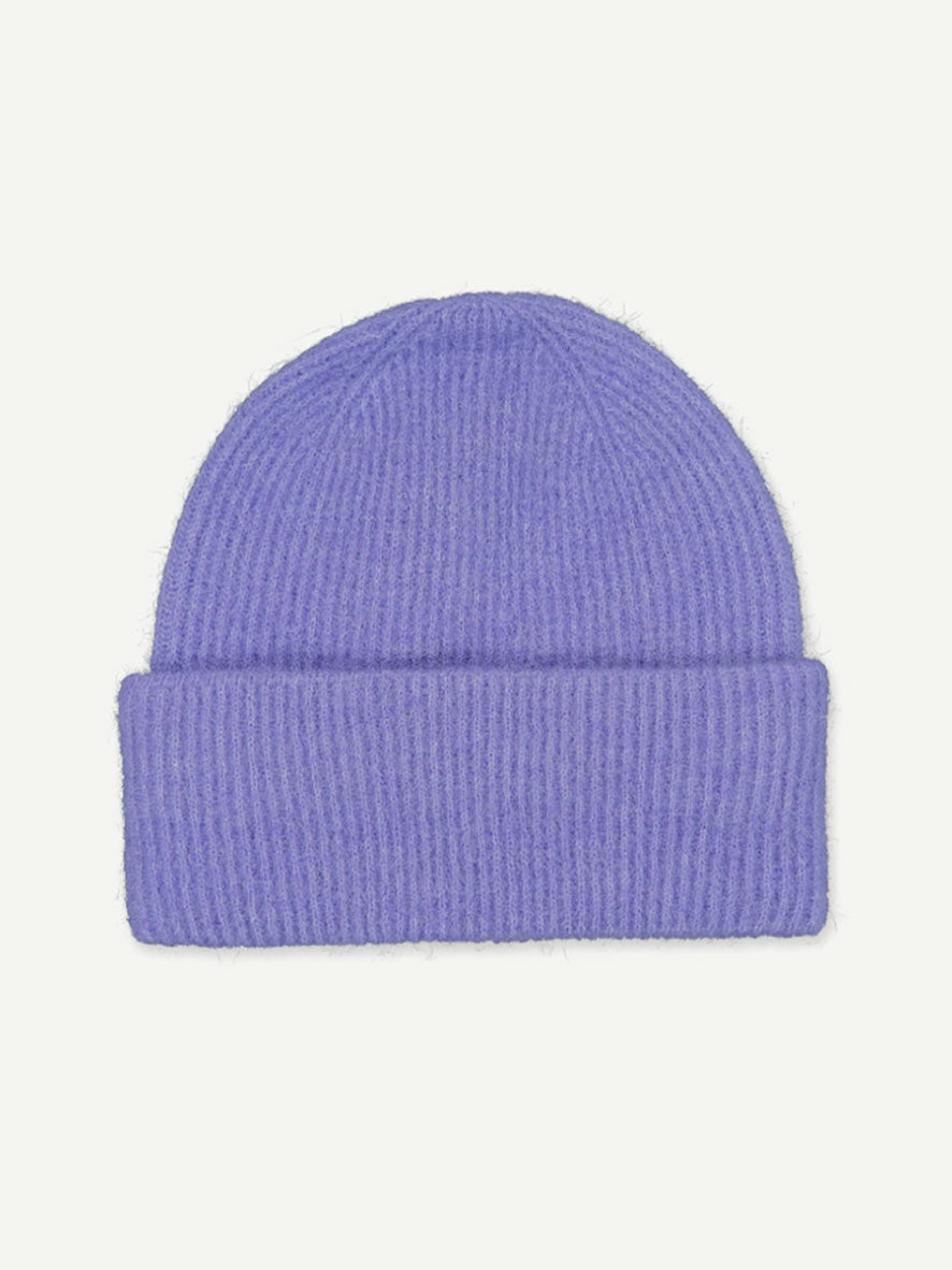 NOR HAT ASTER PURPLE