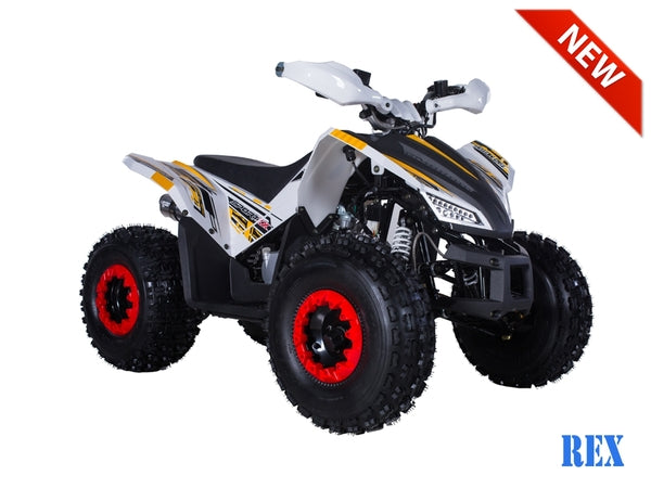 Atv For Sale >> Tao Motor Rex Youth Atv