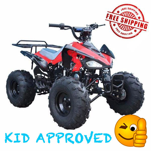TaoTao CHEETAH Youth ATV