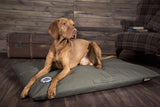Scruffs Expedition Orthopaedic Pet Bed