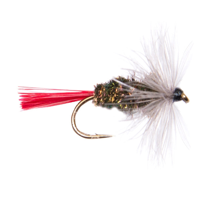 Grayling Witch Hackled Dry Flies