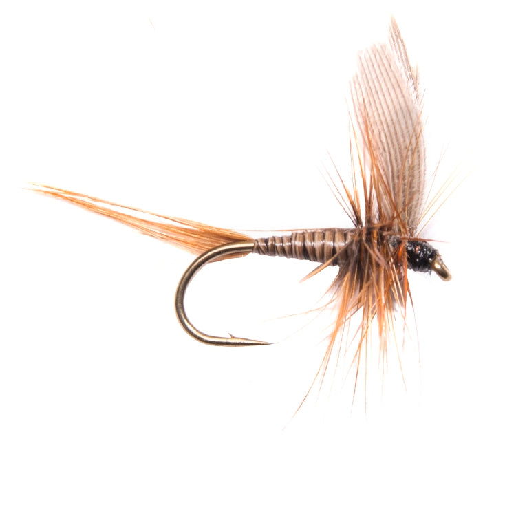 Dark Olive Winged Dry Flies