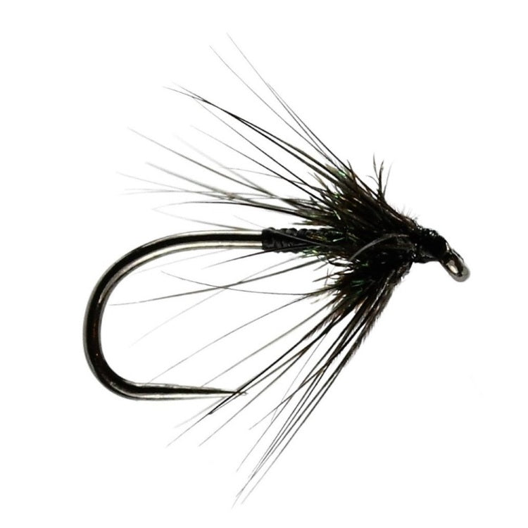 Black Spider Wet Flies