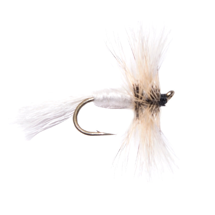 White Wulff Winged Dry Flies