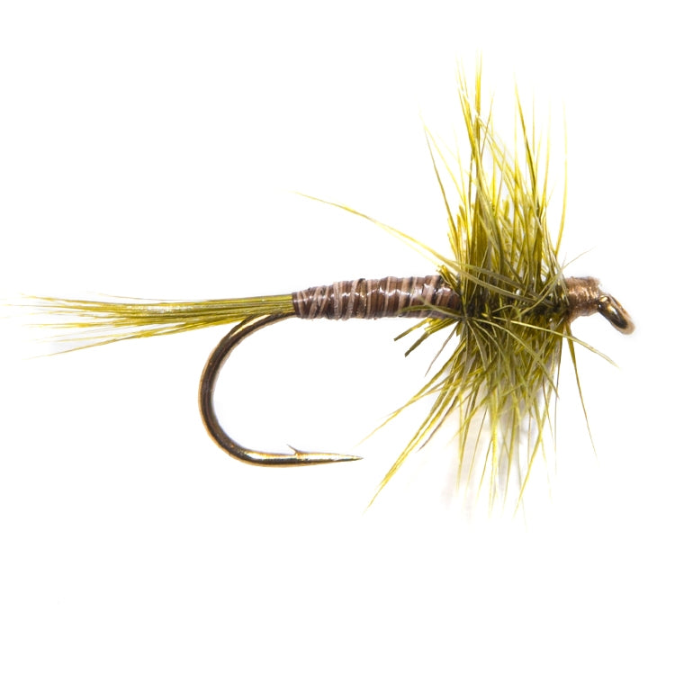Medium Olive Hackled Dry Flies