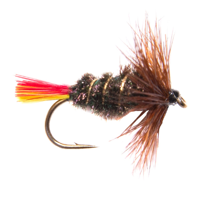 Terrys Terror Hackled Dry Flies