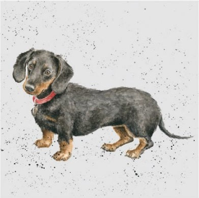Wrendale Designs Dachshund Card